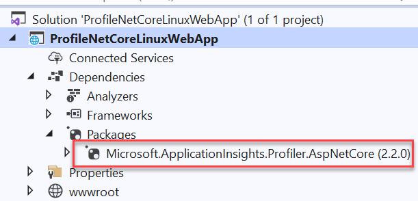 Azure App Service - Profile .Net Core App Service - Linux - Profiler Nuget Package